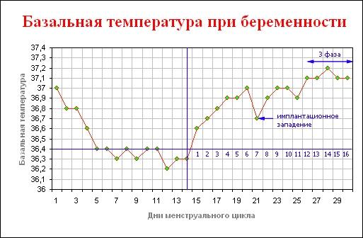 График базальной температуры при беременности на ранних сроках