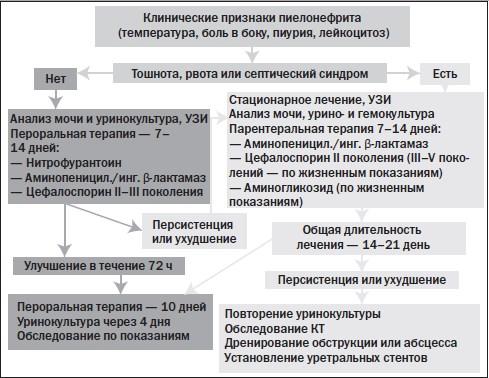 Схема лечения при заболевании почек