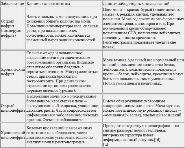 Симптомы различных видов пиелонефрита