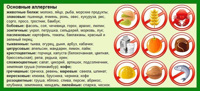 Продукты, вызывающие развитие аллергии