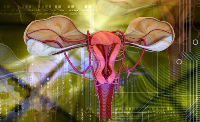Седловидная матка и беременность