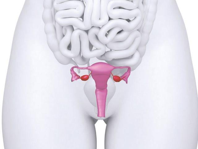 Опущение матки и беременность