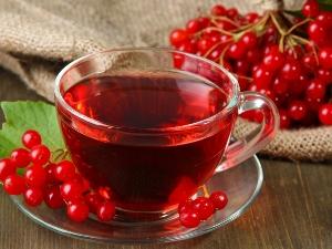 Чай с калиной при беременности