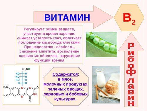 Витамин В2 при планировании беременности