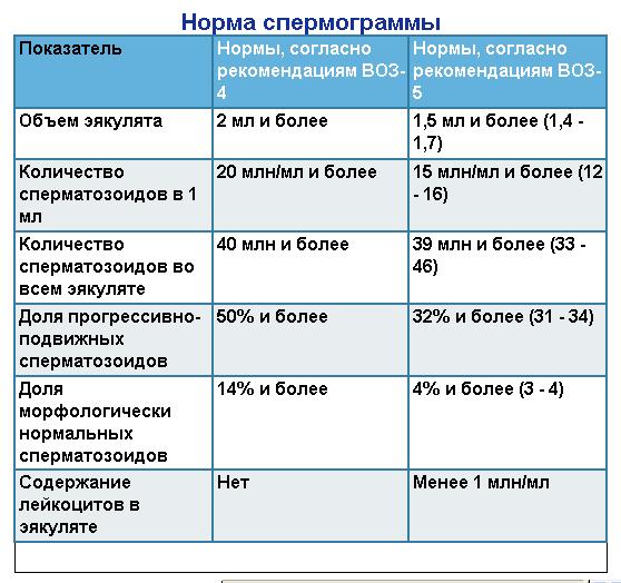 спермаграмма результаты
